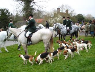 Easton Harriers Hunt Meet at the Village Green